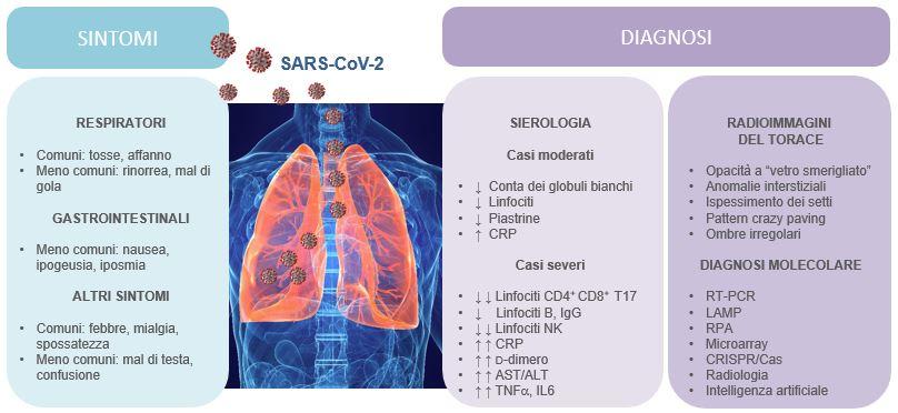 Sintomi e diagnosi COVID-19